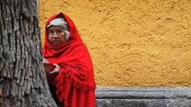 Мексикада бірнеше әйел ақ көйлек киіп, ағашқа тұрмысқа шықты