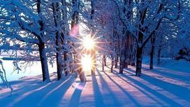 Ауа-райы болжамы: Елімізде күн жылына бастады