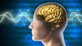 Ученые неожиданно открыли лекарство против старения мозга