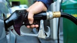 Энергетика министрі еліміз қашан 90 % бензинмен қамтылатынын айтты