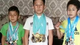 Ребенок готов обменять свои 82 медали по тхэквондо на дом в Алматы