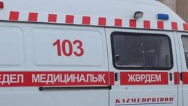 Алматы облысында көшедегі ағаш құлап, бір адамды мерт қылды