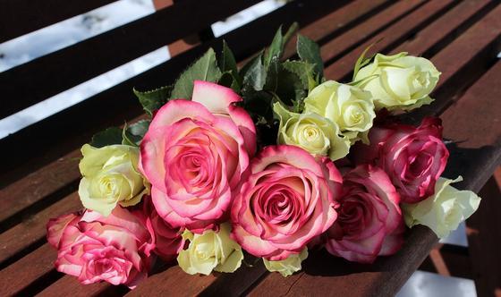 Уничтожили 16 тыс. роз и гвоздик: цветочная индустрия Казахстана терпит убытки