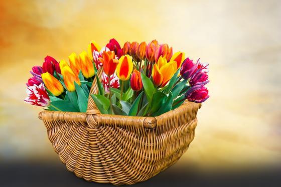 Какой сегодня праздник в мире и Казахстане: календарь 3 апреля