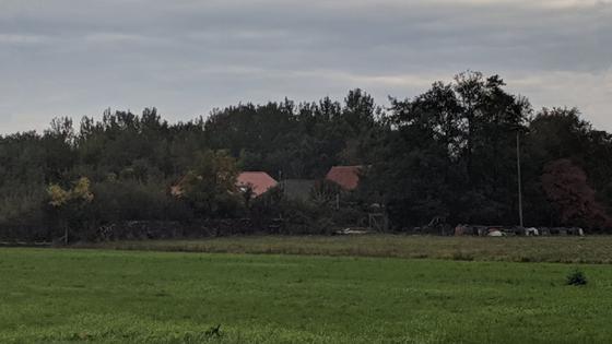 Дети защищают отца, девять лет продержавшего их в подвале на ферме в Голландии