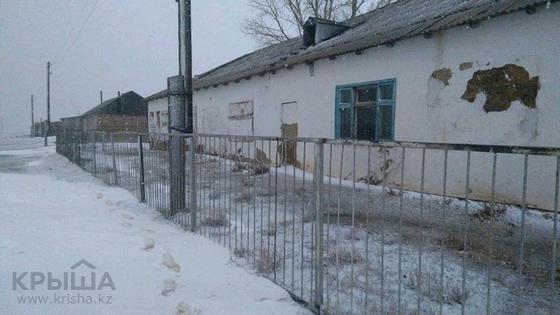 Где в Казахстане можно купить дом за 300 тысяч тенге (фото)