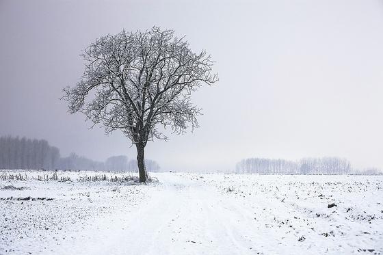 Какой сегодня праздник в мире и Казахстане: 27 февраля