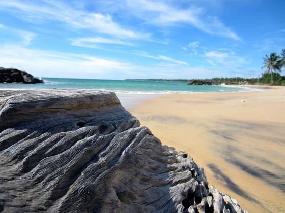 Шри-Ланка отдых: информация для туристов и отзывы