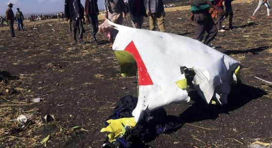 """Крушение """"Боинга"""" в Эфиопии: столкновение с птицей могло привести к авиакатастрофе"""
