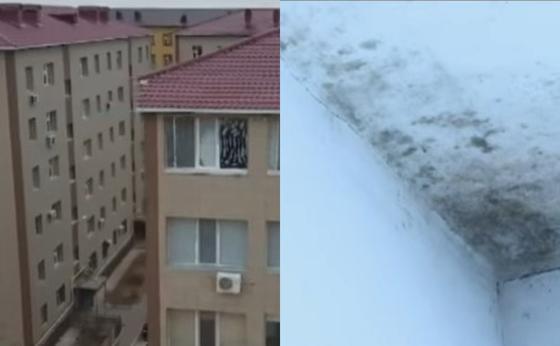 """В Актау жители новостроек бьют тревогу: """"Стены в новых квартирах покрылись плесенью, влажность воздуха составляет 80%"""""""