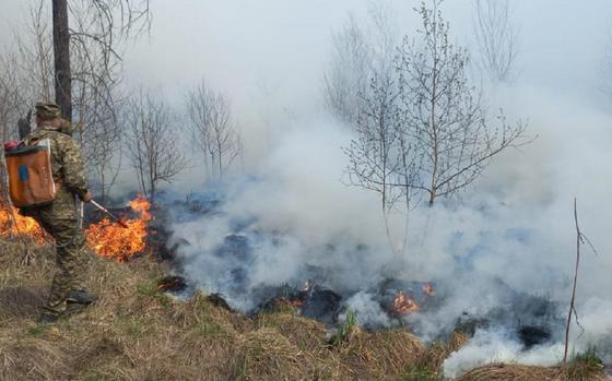 Пожарный тушит огонь в лесу