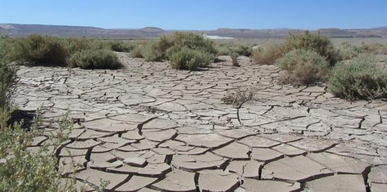 Казахстанцев предупредили об острой нехватке воды через 20 лет