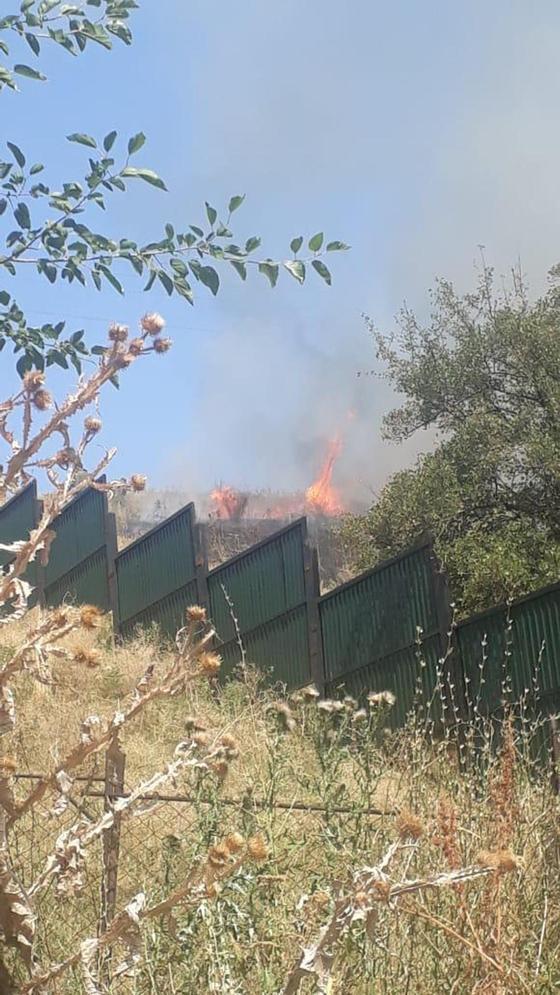 Пожар произошел на склоне горы в Алматы (фото)