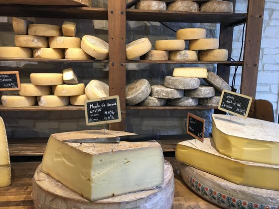 Сыр с плесенью: виды, польза и вред