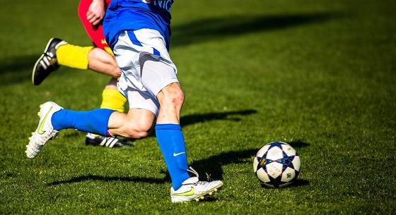 """Прекратить нанимать футболистов с """"бешеными"""" заплатами предложил депутат"""