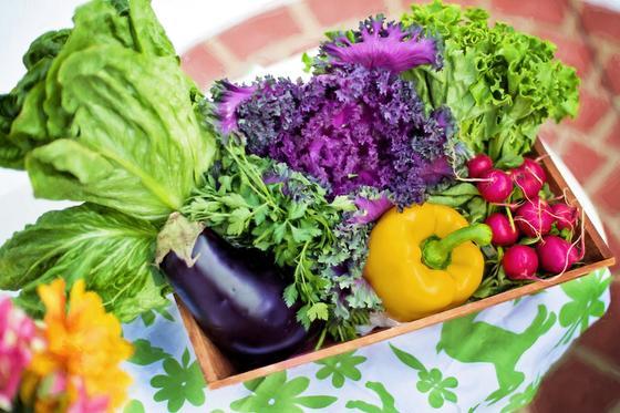 Ящик с овощами и зеленью