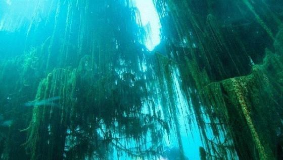 Иностранные СМИ восхитились красотой озера Каянды