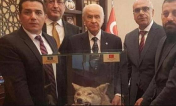 Кайрат Турлыханов подарил голову волка турецкому оппозиционеру