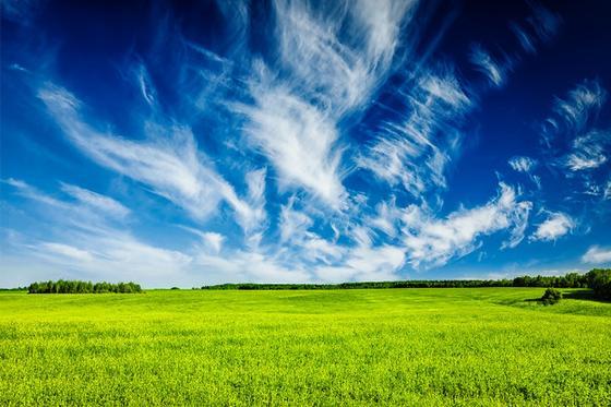 Зеленое поле, голубое небо, белые облака