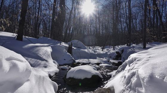 Рекордное количество снега в Западно-Казахстанской области угрожает паводками
