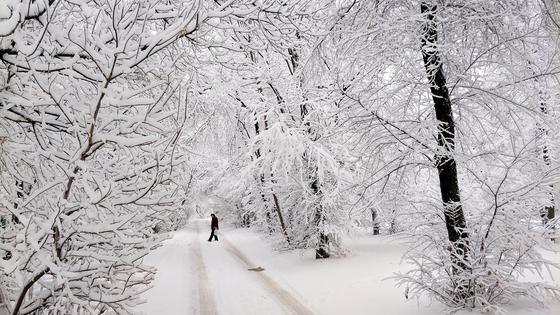 Дождь и снег ожидаются в Казахстане в воскресенье