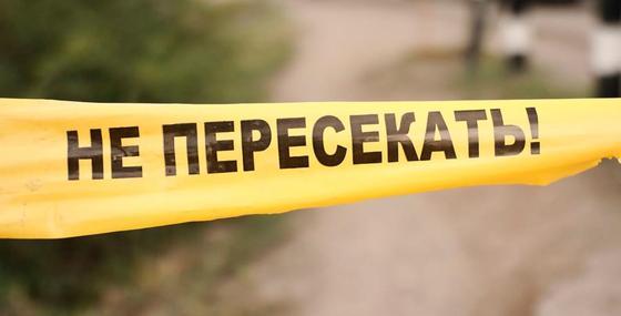 Жителя Нур-Султана убили металлической трубой и выбросили в кювет в Алматинской области