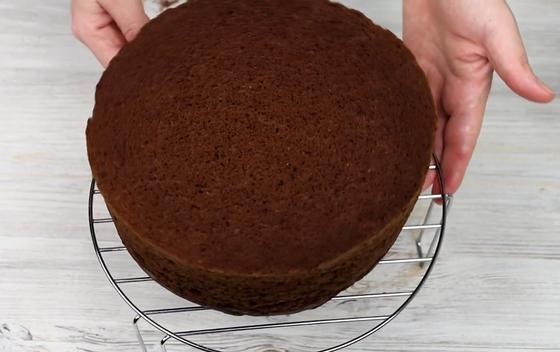 Высокий шоколадный бисквитный корж на столе