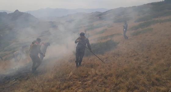 Степной пожар в Алматинской области, в котором погибли 3 человека, ликвидирован