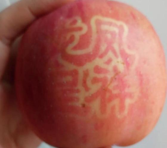 Қытайлық йероглифтер бейнеленген алмалар көкшетаулықтардың зәресін ұшырды