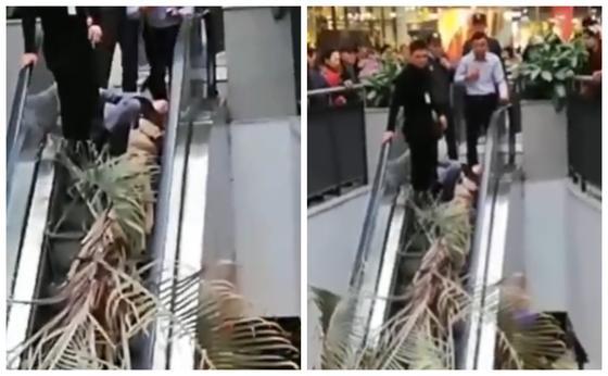 Астанада сауда үйінде бойжеткеннің үстіне пальма құлап кетті (видео)