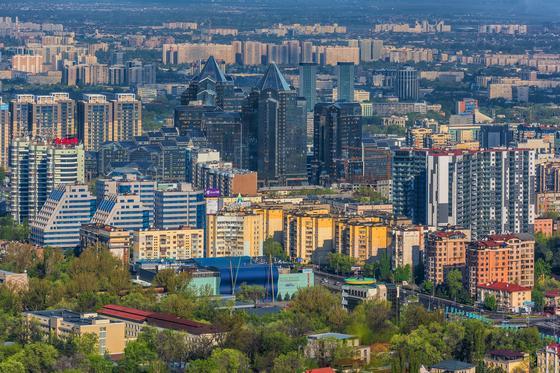 Көрекі фото: Максим Золотухин
