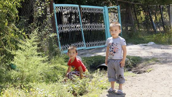 Дети стоят на дороге