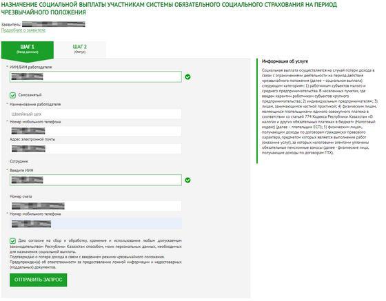 Подача заявки на социальные выплаты на сайте электронного правительства РК