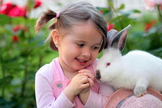 Идеи для стартапа: разведение кроликов