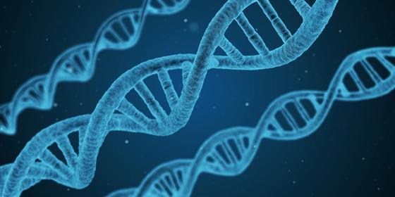 Три спирали ДНК
