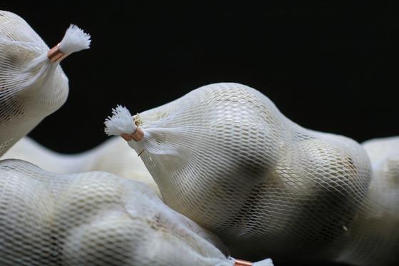 Хранение чеснока в сетчатых мешках