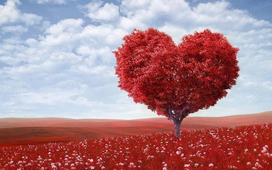 Самые красивые стихи о любви великих поэтов