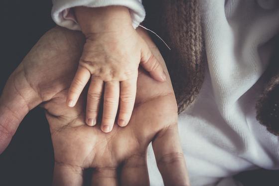 Руки детская и взрослая