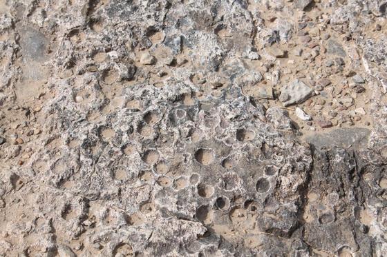 Фото: ernur.kz/Бала таяғымен ұрған кезде осындай тастың бетінде осындай бейне қалып қойған