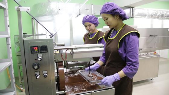 Шоколад для профилактики заболеваний на основе кобыльего молока появится в Казахстане