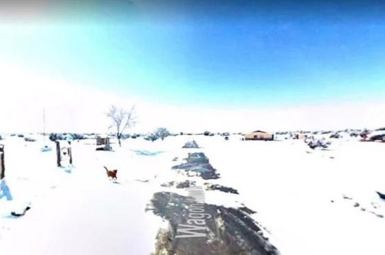 Трасса в снегу