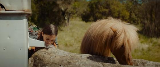 Девочка и лошадка пьют воду. Кадр из фильма «Поли»