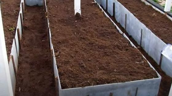 В теплице в больших деревянных ящиках насыпана земля с торфом