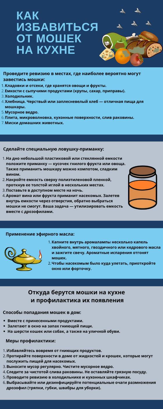 Инфографика: как избавиться от мошек на кухне