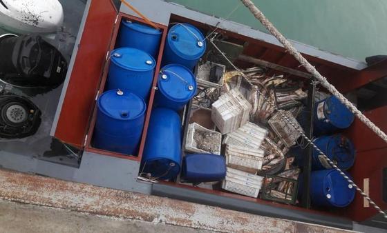 Ущерб на 191 млн тенге: выяснились подробности задержания браконьеров на Каспии (фото)