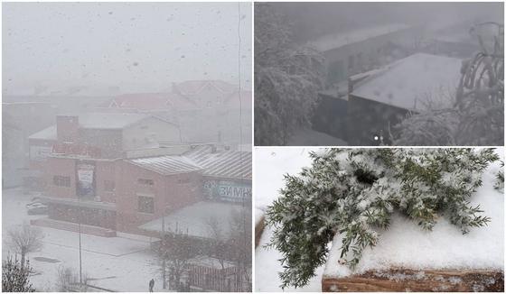 Снег выпал в ряде регионов Казахстана (фото, видео)