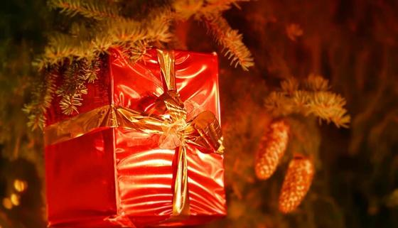 «Камень, кошачья еда и драконье яйцо»: названы самые раздражающие новогодние подарки