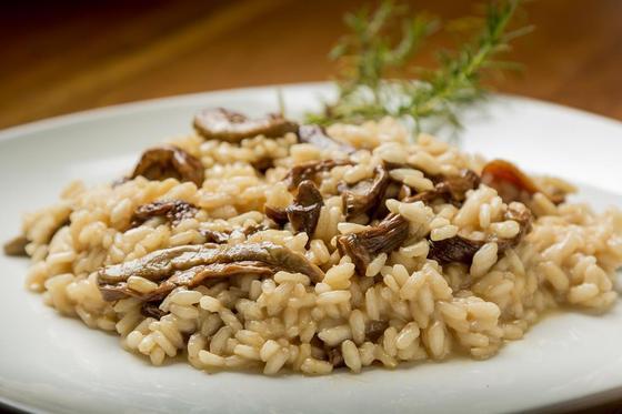 Грибы шиитаке: польза, вред, свойства, как готовить