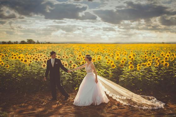 Жених и невеста на фоне поля подсолнухов