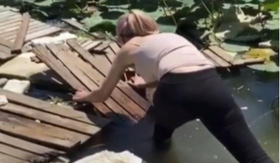 Алматинка возмутилась тем, что отдыхающие срывают лотосы на Первомайских прудах